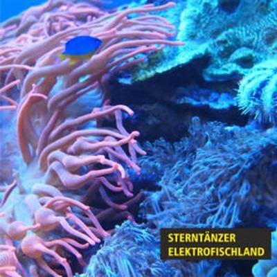 Elektrofischland